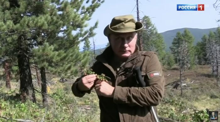 Изображение: http://members.hrencore.ru/store/Putin-sobiraet-brusniku.jpg